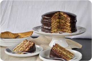 Smith Island Cake-0098