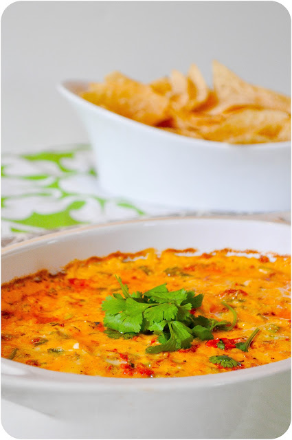 Baked Tex-Mex Cheese Dip | www.lemon-sugar.com