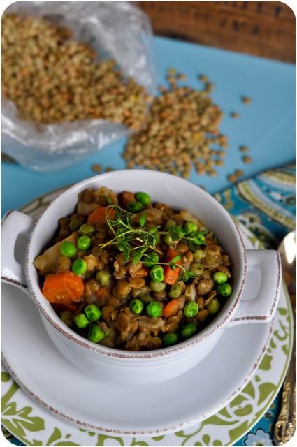 Lentil & Vegetable Soup-1-13