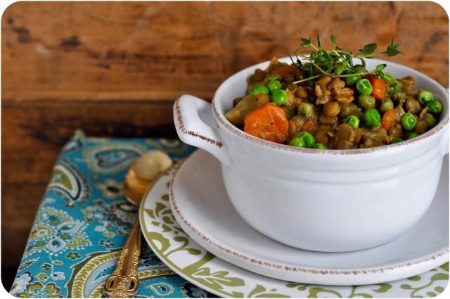 Lentil & Vegetable Soup-1-7