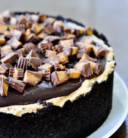 Chocolate Peanut Butter Torte