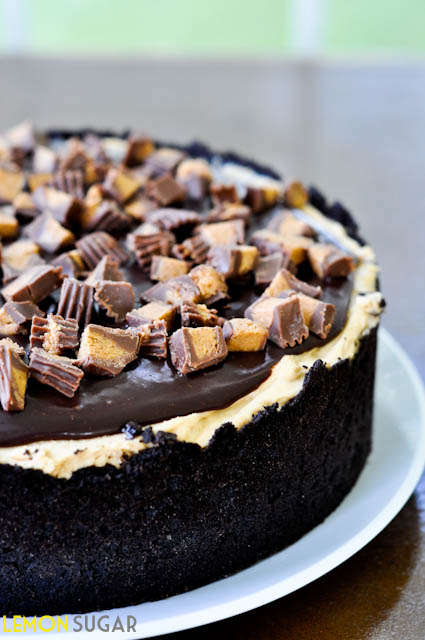 Chocolate Peanut Butter Torte-0158