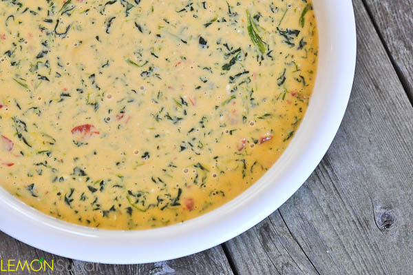 Spinach Queso Dip-0124