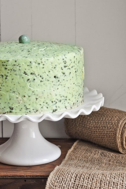 Mint Chocolate Chip Cake | www.lemon-sugar.com