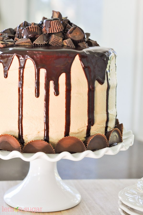 The Ultimate Peanut Butter Cup Chocolate Cake-0464