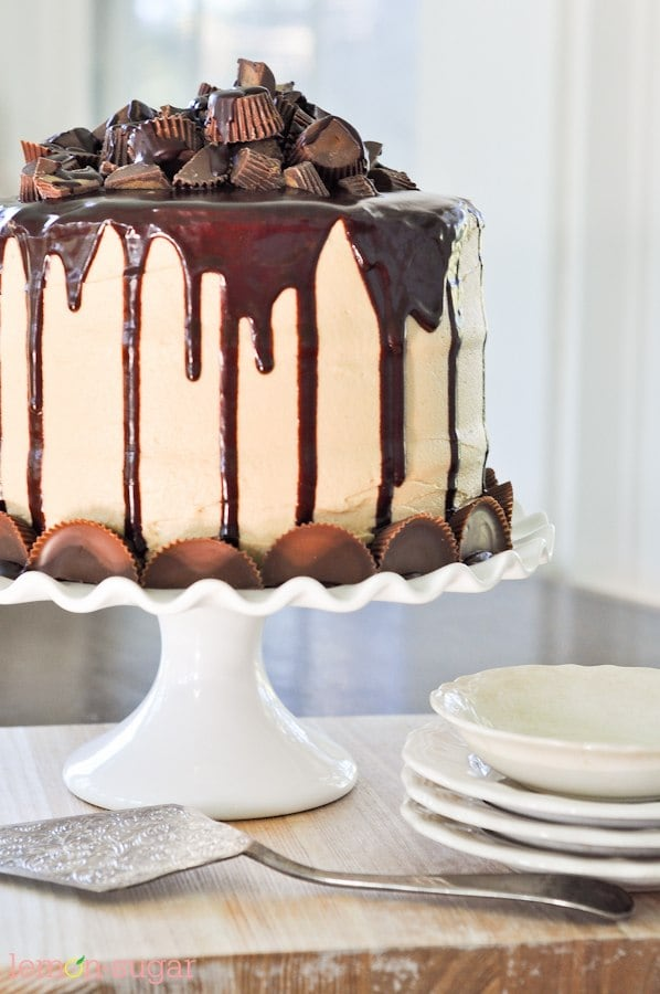 The Ultimate Peanut Butter Cup Chocolate Cake-0469