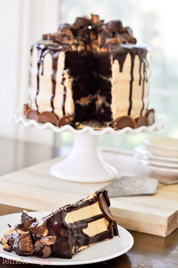 The Ultimate Peanut Butter Cup Chocolate Cake-0490