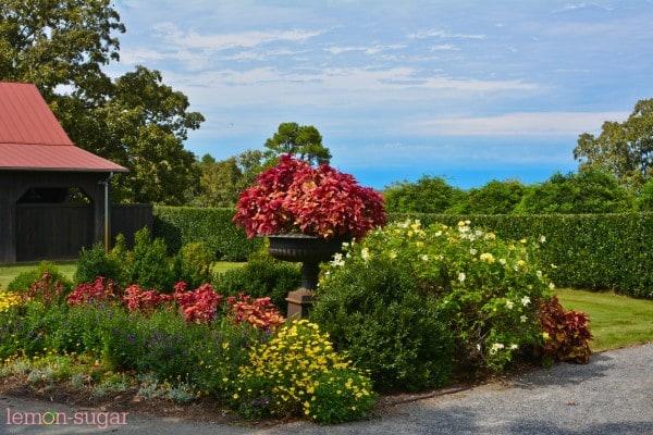P Allen Smith Garden Home-0293