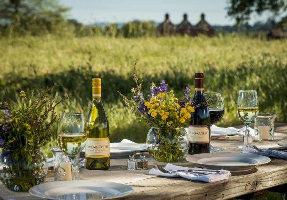 Summer Sauvignon Blanc Party – Part Two